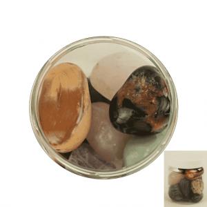 Drumstones Mix Brazil XXL in Transparent Pot