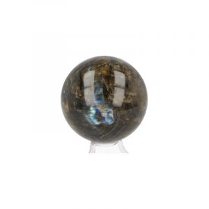 Bulb of Gemstone Labradorite (8 cm)