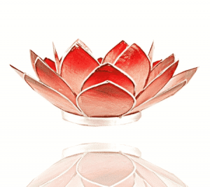 Lotus Atmospheric Light Pink-Red Silver Edge