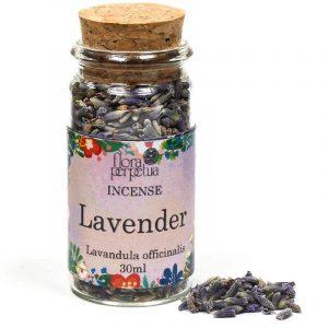 White spice Lavender