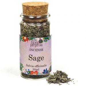 Sage Grey / Prairie Bijvoet