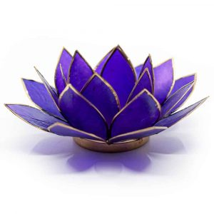 Lotus Mood Light Violet 7th Chakra Gold Rim