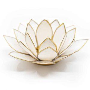 Lotus Mood Light White Gold Rim