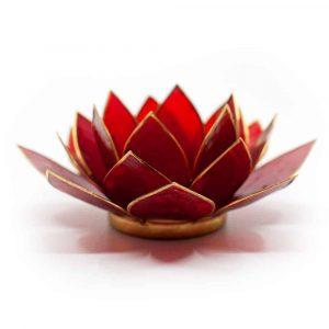 Lotus Mood Light Red 1st Chakra Gold Rim