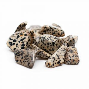 Tumbled Stones Dalmatian Jasper (20 to 40 mm) - 200 grams