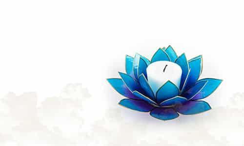 Lotus Atmospheric lights