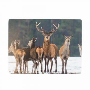 Placemats Flock of Deer (Set of 4)