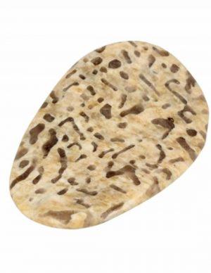 Zebradorite Gemstone Pringle