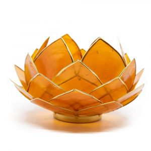 Lotus Mood Light Orange Gold Rim Large