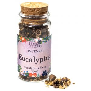 White spice Eucalyptus