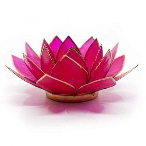 Lotus Mood Light Fuchsia Gold Rim