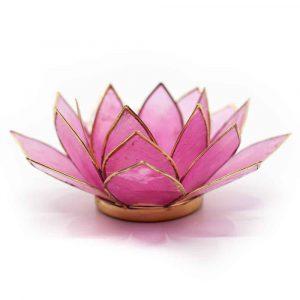 Lotus Mood Light Pink Gold Rim