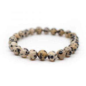 Gemstone Bracelet Dalmatian Jasper