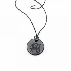 Shungite Horoscope Pendant Capricorn (30 mm)