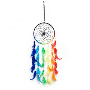 Dreamcatcher with coloured feathers (40 cm)
