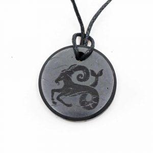 Shungite Horoscope Pendant Capricorn (30 mm)