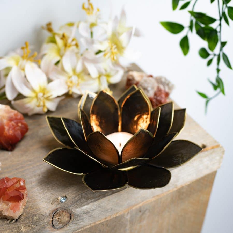 black lotus mood light