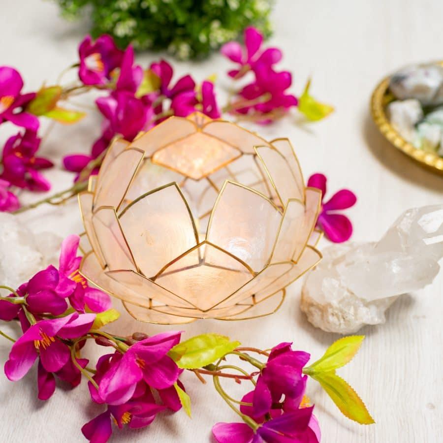 white lotus mood light